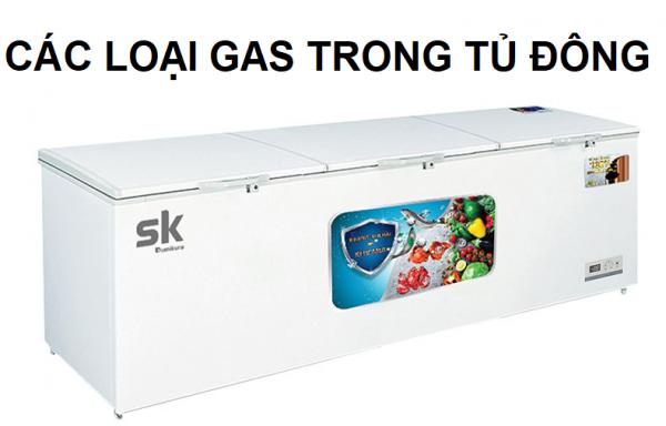 các loại gas trong tủ đông