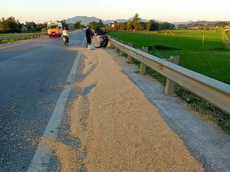 phơi nông sản trên quốc lộ