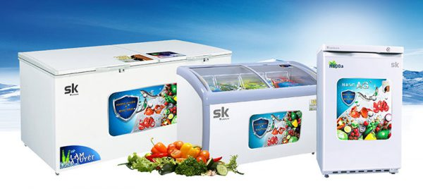 tủ đông sumikura 300L