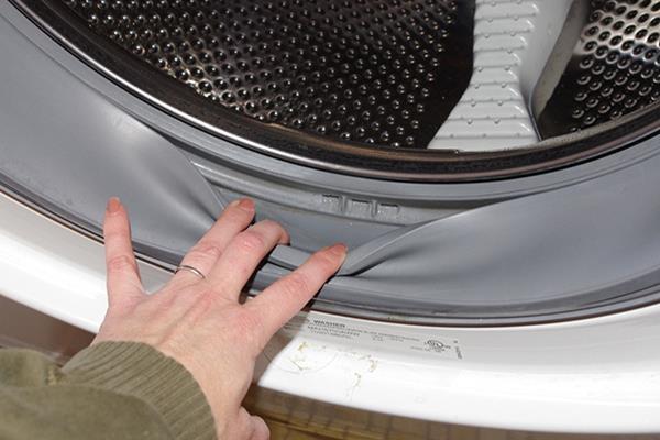 vệ sinh gioăng máy giặt